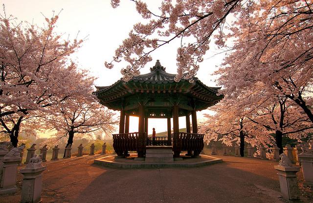 Jižní Korea – Soul – 10990 Kč