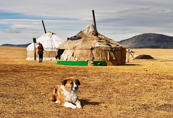 Letní Mongolsko za 13895 Kč