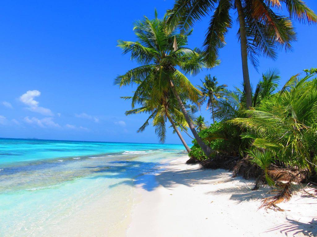 Zápisky z cest: Maledivy