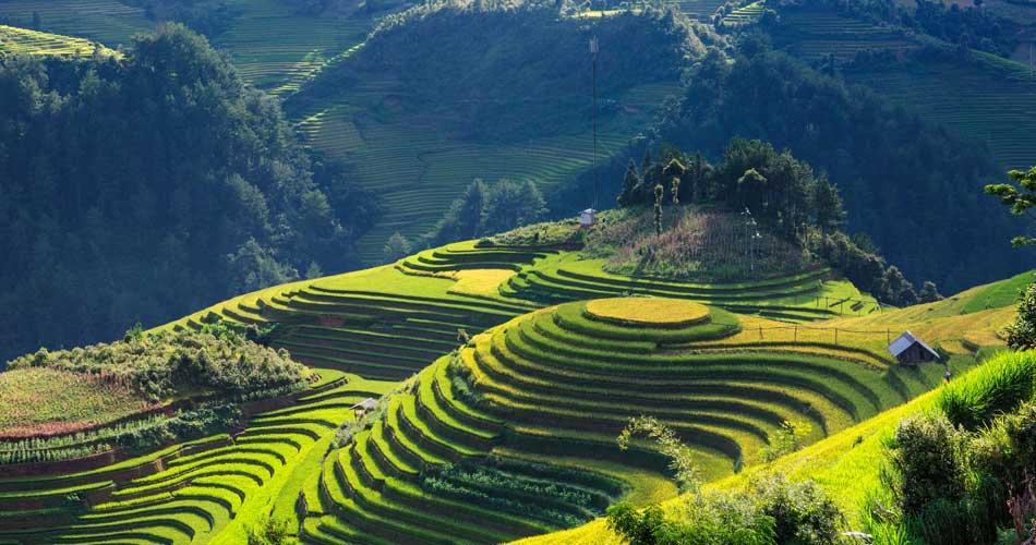 Vietnam – Ho Či Minovo Město – 12 629 Kč