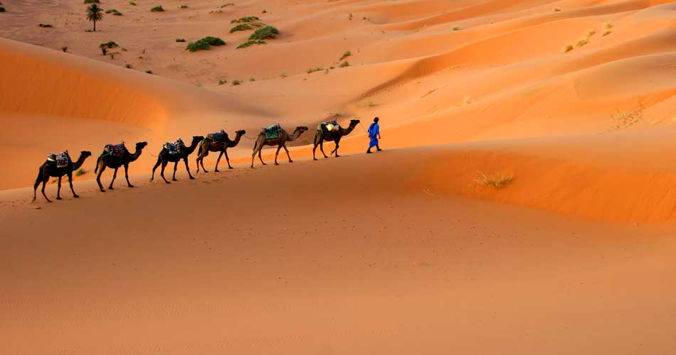 Maroko z Memmingenu – 511 Kč