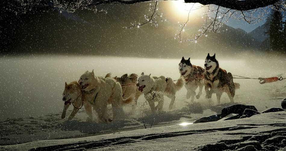 Polární kruh – Laponsko – 5188 Kč