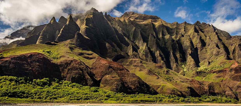 hawaii-ciste.jpg