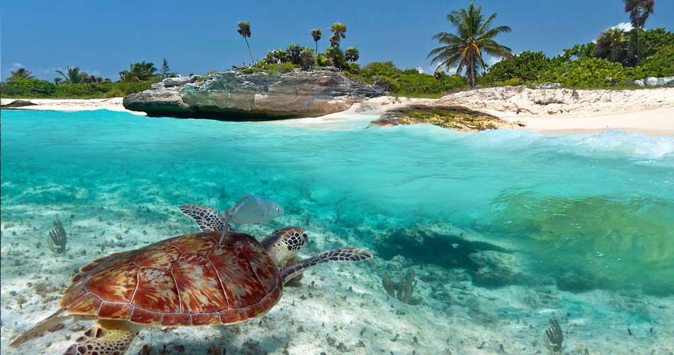 Megatrip po Karibiku za 14 511 Kč