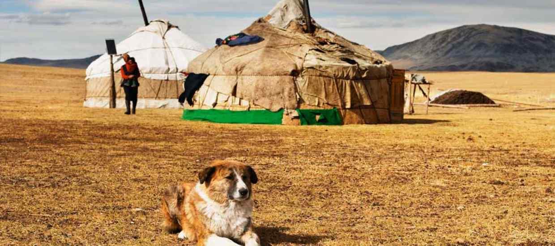 Mongolsko_web.jpg