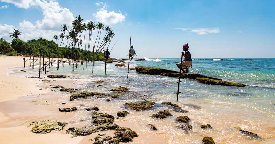 Srí Lanka – 11 552 Kč