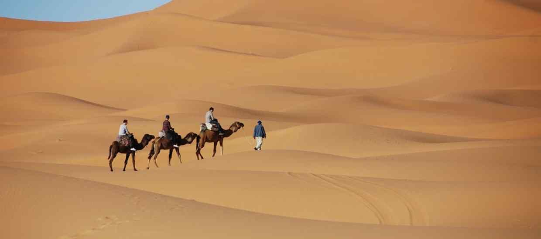 desert-1914052_960_720.jpg