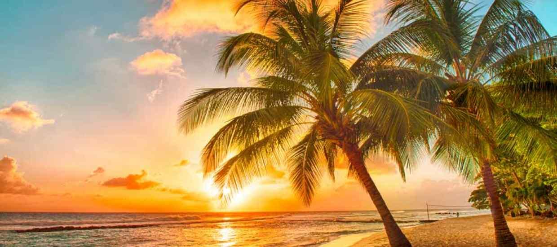 Barbados-Megatrip.jpg