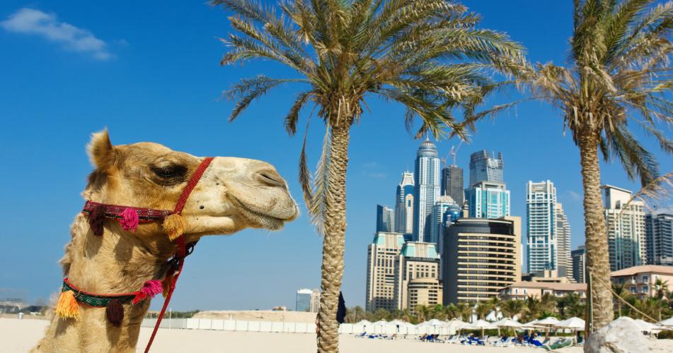 Dubaj z Katowic