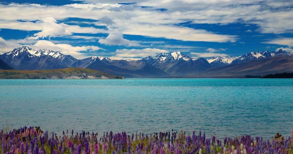 Nový Zéland – 7307 Kč