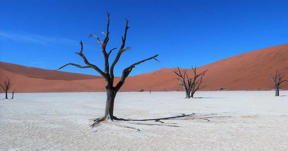 Namibie z Drážďan a Mnichova za 9 188 Kč