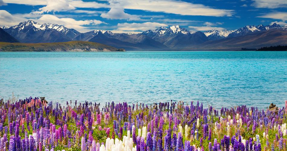 Nový Zéland - Christchurch z Osla a Berlína