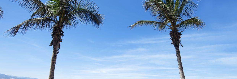 Kanárské ostrovy – Gran Canaria z Vídně za 1 792 Kč