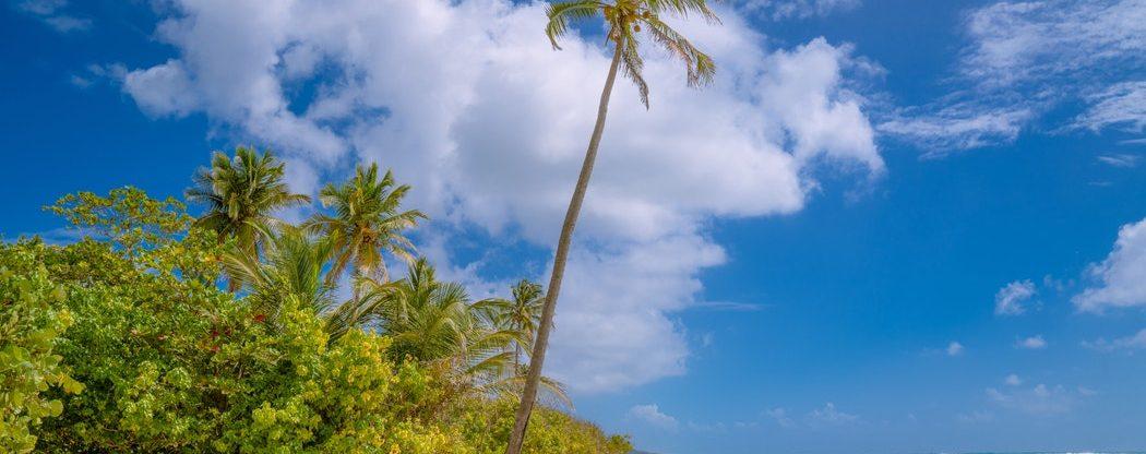 Megatrip: mise Karibik aka 4v1 za 15 408 Kč