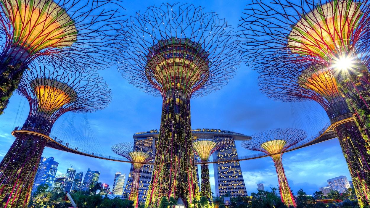 Prohlídka Singapuru zdarma