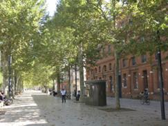 Cestopis z Toulouse