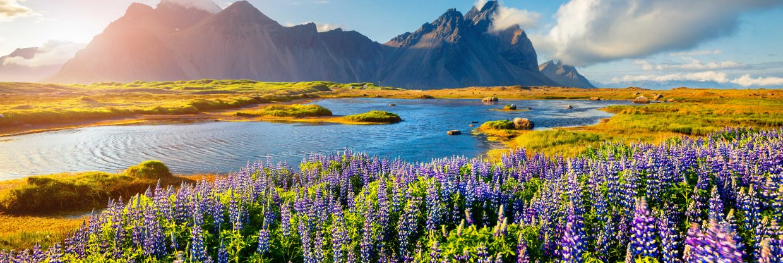 Island na Velikonoce z Katowic