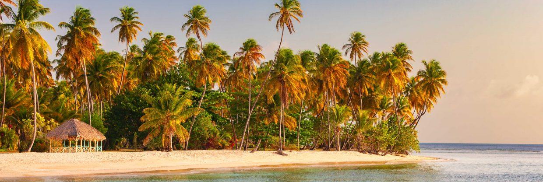 Karibské souostroví Trinidad a Tobago z Prahy
