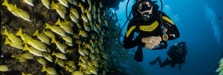 Ochutnávka potápění