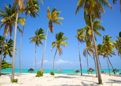 letenky na Zanzibar