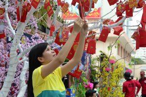 Kultura a zvyky ve Vietnamu