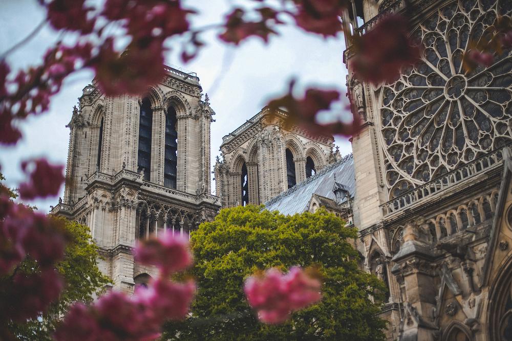 Kultura a zvyky ve Francii
