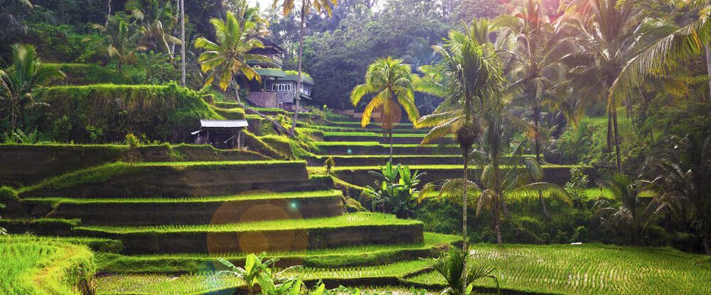 Indonésie – Bali z Prahy s Qatar Airways