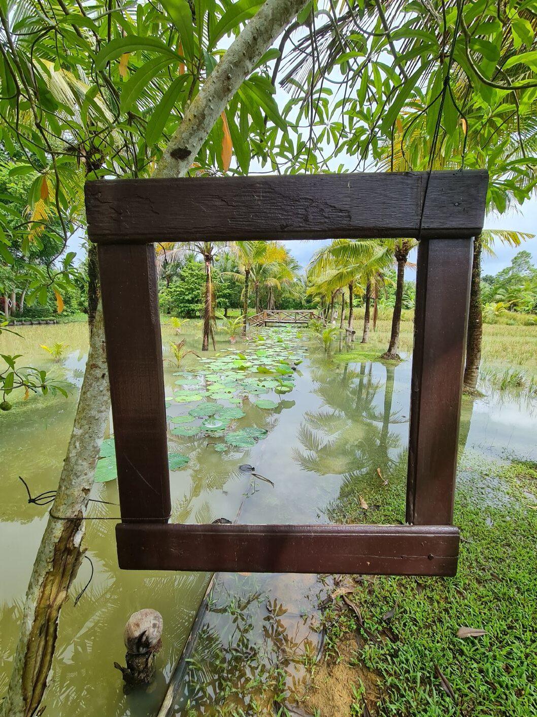 Cestování do Thajska v roce 2021 aneb Sandbox program v praxi