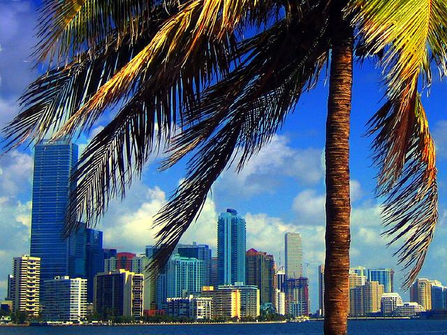 Miami z Vídně